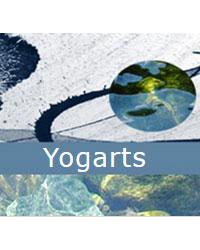 image du professeur de yoga YOGARTS