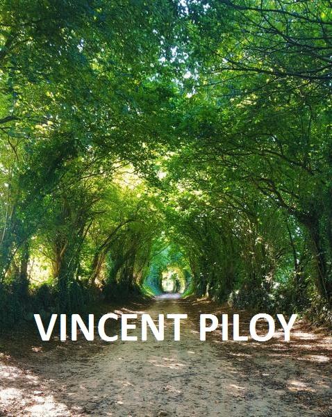 Professeur Yoga PILOY Vincent
