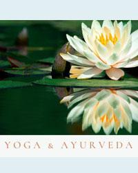 image du professeur de yoga YOGA & AYURVéDA